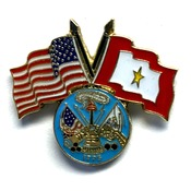 USA/SF Gold Star pin with Army logo